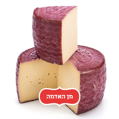 מנצ'גו ביין Wine cheese