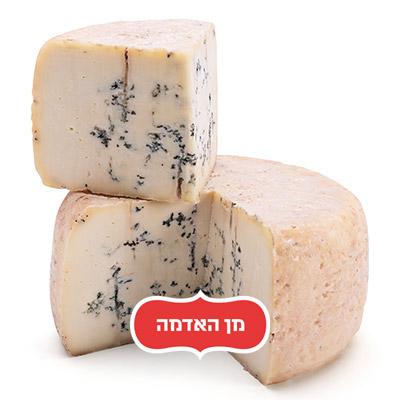 גבינה מחלב כבשים בסגנון רוקפור     Roquefort